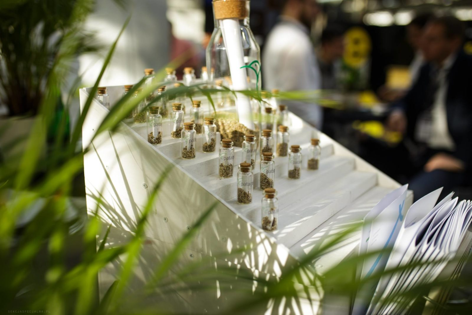 Seed-Bottles