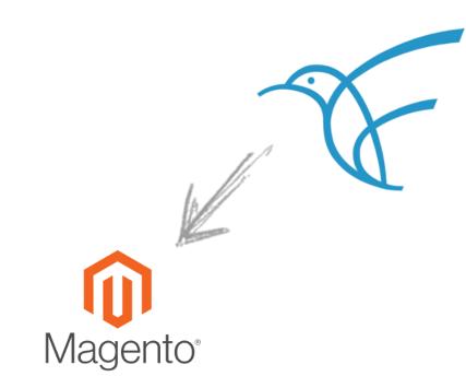 Magento-Plugin im Magento Marketplace